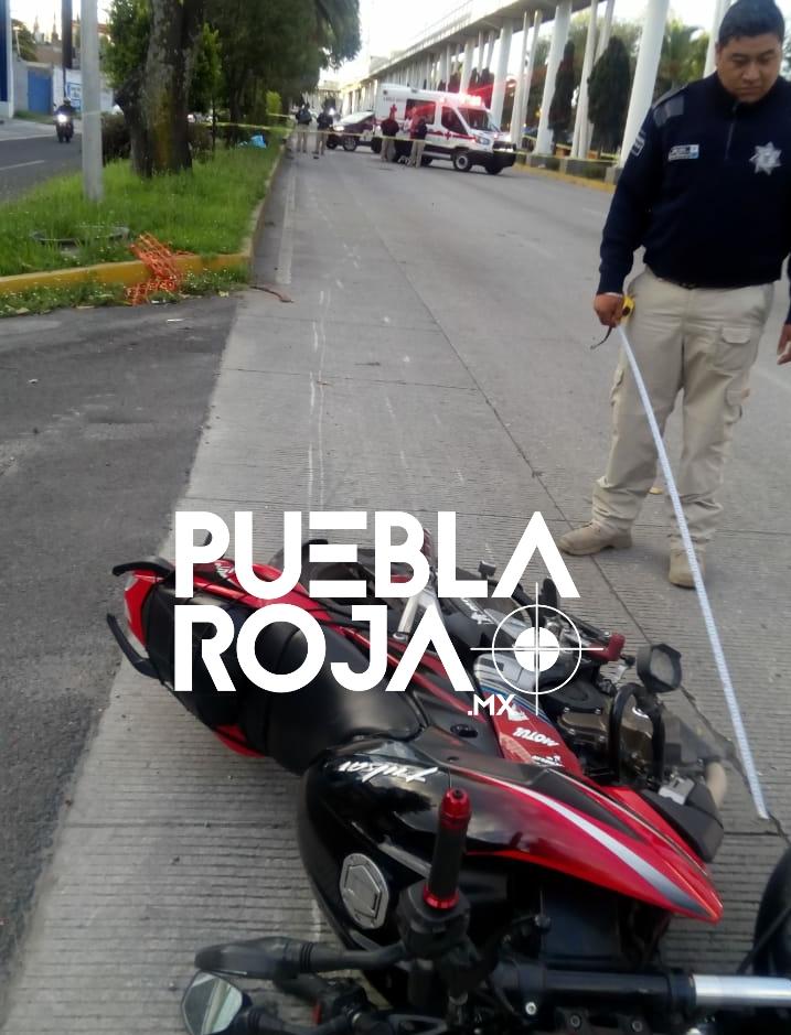 Mociclista